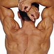 services_posture